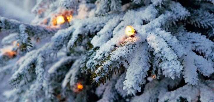 Jul på Tidö Slott